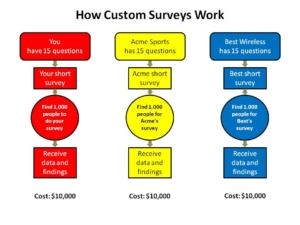 How Custom Surveys Work