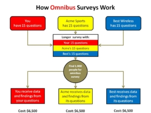 How Omnibus Surveys Work